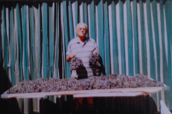 Sergio separando as uvas para produzir vinhos