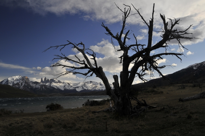 Vista das Torres del Paine, na Patagônia chilena. Foto: Débora Costa e Silva