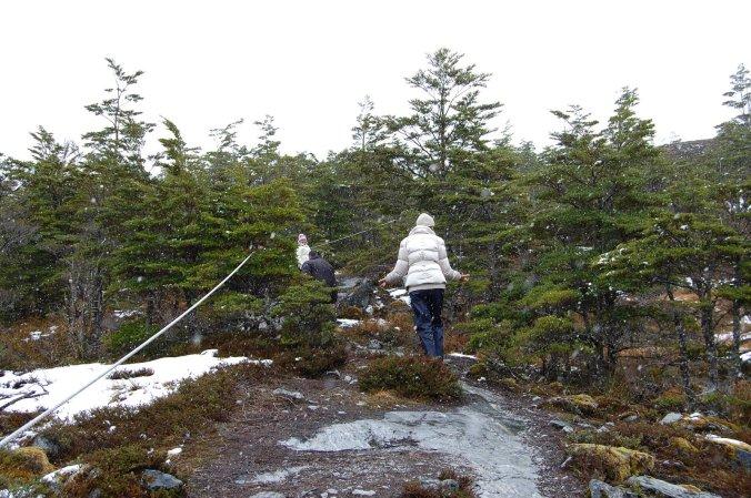 Não importa se é a primeira ou a quinquagésima vez: quando vemos a neve cair, o encanto permanece o mesmo. Foto: Débora Costa e Silva