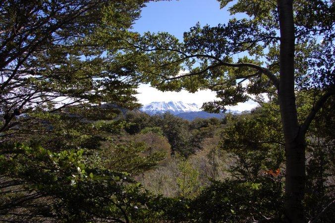 Vista de montanhas de picos nevados a partir da Baía Wulaia, no extremo sul do Chile. Foto: Débora Costa e Silva
