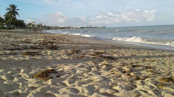 Praia de Manaíra, bem tranquila. Foto: Débora Costa e Silva