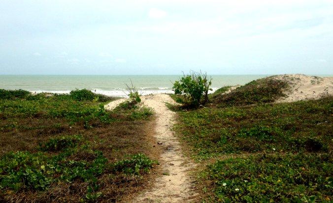 Praia de Intermares, onde as tartarugas marinhas depositam seus ovos. Foto: Débora Costa e Silva