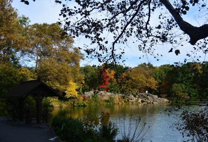 Central Park começam a ficar colorido no outono. Foto: Débora Costa e Silva