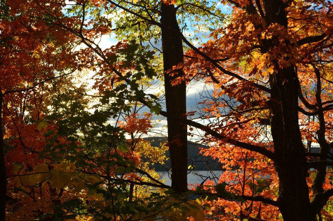 outono_canada_22